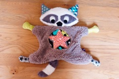 Flying Raccoon 3 face